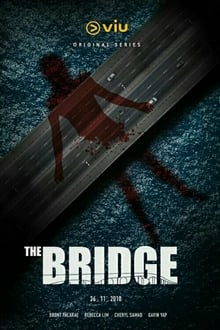 The Bridge Season 1 (2018)
